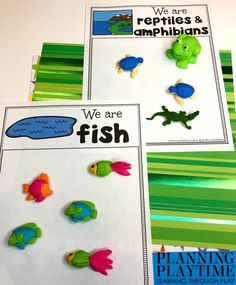Looking for fun Pond Theme Preschool Activities for kids? Check out these 16 Hands-On Pond Theme Learning Activities and Crafts for Preschool or Kindergarten. Autism Activities, Sorting Activities, Activities For Kids, Summer Worksheets, Preschool Worksheets, Teacher Games, Pond Animals, Animal Classification, Preschool Special Education