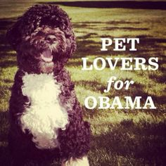 Pet Lovers for Obama!!!