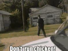 Bad ass chicken GIF