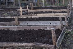no dig garden Dig Gardens, Wood, Cottages, Gardening, Plant, Cabins, Woodwind Instrument, Country Homes, Timber Wood