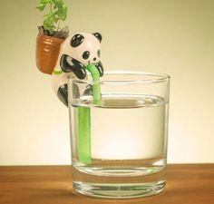 Le mini pot de fleurs Panda buvant de l'eau dans un verre transparent
