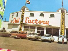 Vintage Fort Myers Florida Shell Factory postcard by 3floridagirls