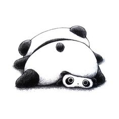 tare panda ❤ liked on Polyvore featuring fillers, panda, drawings, animals, doodles and scribble