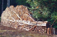 These wood piles are proof that creative people can create art out of just about anything. Amazing!