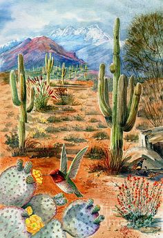 Treasures of the Desert Art Print by Marilyn Smith. All prints are professionally printed, packaged, and shipped within 3 - 4 business days. Choose from multiple sizes and hundreds of frame and mat options. Watercolor Landscape, Landscape Art, Landscape Paintings, Watercolor Art, Desert Landscape, Landscapes, Cactus Painting, Cactus Art, Cactus Plants