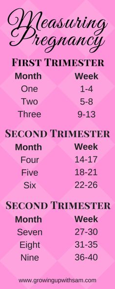 measuring-pregnancy-pregnancy-chart-first-trimester-pregnancy-resources-tips-and-tricks-free-pregnancy-journal-digital-workbook/ SULTANGAZI SEARCH Pregnancy Chart, Pregnancy First Trimester, Pregnancy Journal, Trimesters Of Pregnancy, Second Trimester, Pregnancy Guide, Second Pregnancy, Pregnancy Weeks And Months, Pregnancy In Weeks