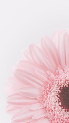 iPhone and Android Wallpapers: Beautiful Pastel Flower Wallpaper for iPhone and Android wallpaper iphone Tumblr Wallpaper, Flor Iphone Wallpaper, Frühling Wallpaper, Wallpaper Flower, Spring Wallpaper, Iphone Background Wallpaper, Pastel Wallpaper, Iphone Backgrounds, Wallpaper Quotes