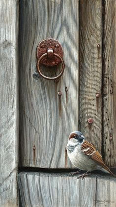 Gorgeous works on this site! Artist Jeremy Paul - Wildlife Artist