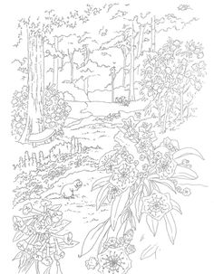 Flower Gardens to Paint or Color Dover Publications