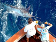 Bahamas Billfish Tournament 2012: June 20-23 -  Seatech Marine Products / Daily Watermakers