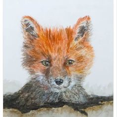 Foxes in the shop!  The original watercolor painting and Giclee prints!