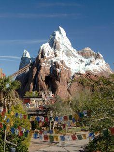 Expedition Everest, Animal Kingdom, Walt Disney World