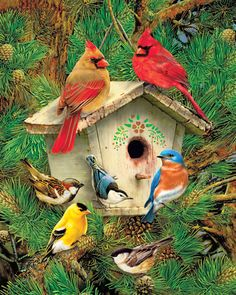 Springbok releases two collections of new jigsaw puzzles for sale a year. View the most recent collection of Springbok jigsaw puzzles for adults and kids, and more. Pretty Birds, Love Birds, Beautiful Birds, Three Birds, Birds 2, Angry Birds, Cardinal Birds, Paint By Number Kits, Tier Fotos