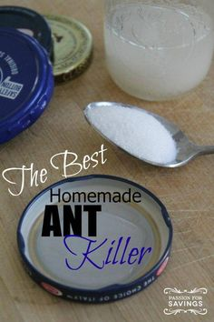 Dear Ants, I really didn't want to have to resort to using this Homemade Ant Killer, but you are not going to take over the house. Ant Killer Recipe, Homemade Ant Killer, Ant Traps Homemade, Household Cleaning Tips, Cleaning Hacks, Cleaning Solutions, Cleaning Spray, Household Products, Borax For Ants