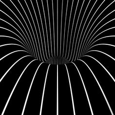 Mindfulness Tricks, Trippy Gif, Animal Gif Optical Illusions, Awesome, Gif Animal, Rollers Coasters, Optical Illusions Gif, Art, 105 Gif. trippy background