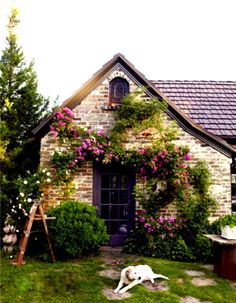 Cottage with purple door!