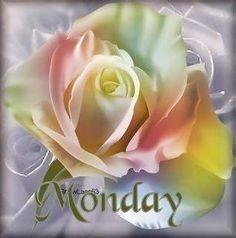 ♡ Good morning~Happy Monday ♡
