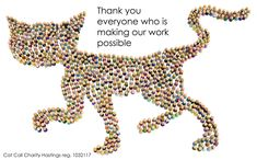Thank You From The Cats x | Cat Call UK Found Cat, Cat Work, Lost & Found, How To Raise Money, Charity, Cats, Gatos, Kitty, Cat