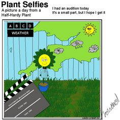 good idea. Plant Cartoon, Hardy Plants, I Got This, Scene, Weather, How To Get, Map, Adventure, Pictures
