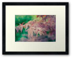 """Secrets of Mid-Autumn"" by Thierry Wojtczak.  Available for sale at http://www.redbubble.com/people/thierrywojtczak/shop"