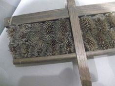 teasel hand carder in the National Wool Museum in Wales.