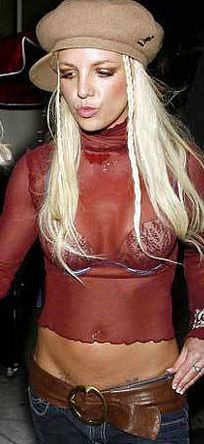 Silver Spandex Catsuit Worn By Britney Spears Buy Your