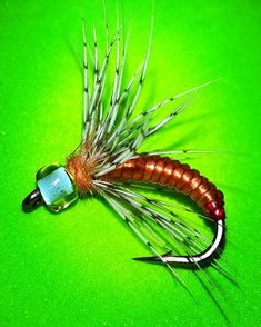 ...Another Glass body Caddis Pupa size 10...Very simply to tie...#flyfishingaddict #flytyingtable #flytyingporn #flytyingaddict #tyingflies #flyfishingnation #flyfishingjunkie #fligenfischen #perhokalastus #bassfishing #fishingflies #flytying #flyfishing #fishbait #troutfishing #flyfishingporn#loonoutdoors #flugbindning#flyfishingonly #flytyingart #flyfishingutah #speyfishing #flyfishinglife #flyfishingfanatic #flugfiske #pescacommosca #pescaamosca #flylords#troutflies#troutbum