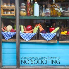 """$10 decal - """"unless you are selling thin mints, no soliciting"""" - front window/door of future house"""