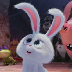 Cute Bunny Cartoon, Cute Cartoon Pictures, Cute Images, Cute Disney Wallpaper, Cute Cartoon Wallpapers, Coco Chat, Snowball Rabbit, Cartoon Mignon, Disney Mignon