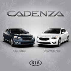Premium colors for the 2015 Kia Cadenza, Smokey Blue and Snow White Pearl. http://www.kia.com/us/en/vehicle/cadenza/2015/experience?story=hello&cid=socog