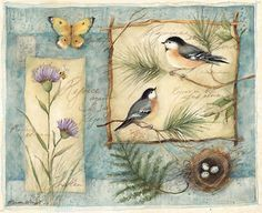 Great Inspiartion bis ;) Susan Winget #birds
