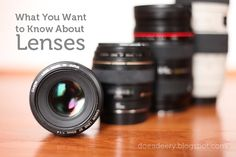 Doe a Deery: Lenses: What You Want to Know