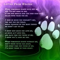 tears of a thousand tomorrows 🐶🐾 -juliette. Letter From Heaven Pet Poems, Letter From Heaven, Pet Loss Grief, Pet Remembrance, Animal Quotes, Animal Poems, Pet Quotes, Dog Memorial, Pet Memorials