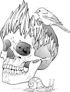 Black And White Skull Bird Vector Picture Download Graphicriver Item 11592286refpxcr