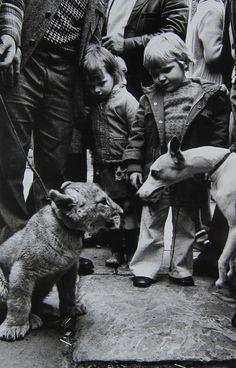 by Markéta Luskačová  Lion cub and dog, Club Row Market, London 1977
