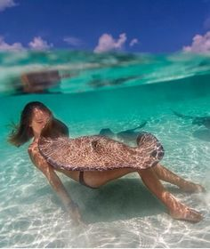 You can swim in crystal clear water with Stingrays!!! Gotta do this one day!