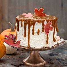 Lyxig tårta med pumpa, kardemumma och kola.
