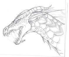 Seawing Sketch by TheLittleWaterDragon.deviantart.com on @DeviantArt