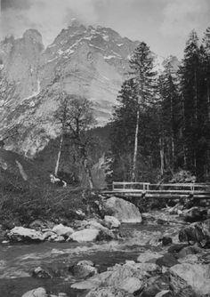 A log bridge in an alpine wooded landscape Platinum print, 42 x Previously on sale at Adam's. Bridge, Photographs, Mountains, Landscape, Nature, Travel, Scenery, Naturaleza, Viajes