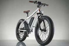 RadRover Electric Fat Bike