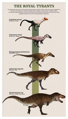 Prehistoric Wildlife, Prehistoric Dinosaurs, Prehistoric World, Prehistoric Creatures, Dinosaur Drawing, Dinosaur Art, Dinosaur Crafts, Tyrannosaurus, Dinosaur Illustration