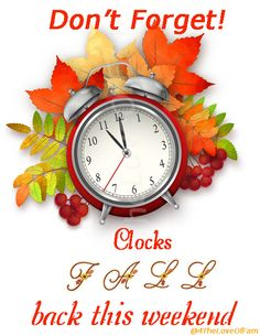 Daylight Savings time ends - fall back this weekend. Change time before bed on Saturday, November Turn Clocks Back, Clocks Fall Back, Daylight Savings Fall Back, Daylight Saving Time Ends, Daylight Ends, Fall Back Time Change, Spring Forward Fall Back, November Quotes, Frases