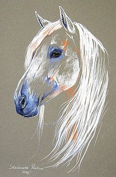Andalusian horse by Paulina Stasikowska Horse Drawings, Art Drawings, Drawing Art, Horse Artwork, Horse Silhouette, Unicorn Art, Animal Sketches, Colorful Drawings, Wildlife Art