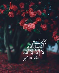 #سبحان_الله Muslim Images, Islamic Images, Islamic Pictures, Quran Quotes Love, Quran Quotes Inspirational, Beautiful Islamic Quotes, Quran Wallpaper, Islamic Quotes Wallpaper, Religion Quotes