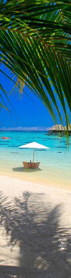 Hilton Moorea Lagoon Resort and Spa Water Villa | LOLO❤︎