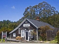 Ocean Cove Store and Campground, Sonoma Coast CA...one of the places I miss the most in CA.