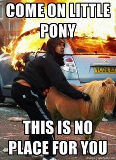 Come on Pony!  Riot meme. #funny #humor