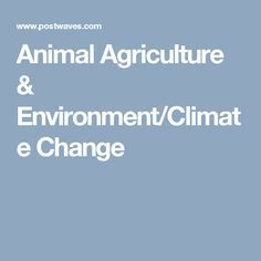 Animal Agriculture & Environment/Climate Change