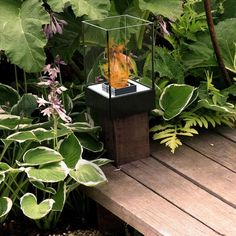 The DecorPro Cell Micro Bio Ethanol Indoor / Outdoor Fireburner  is the smallest in its series of Cell tabletop fireburners. This tabletop bioethanol fireplace is unique in terms of functionality and use. The delicate-yet-bold DecorPro Cell Micro Bioethanol Fireburner can be easily mounted on a 4x4 wood post for an eye-catching accent. Tabletop Fireplaces, Bioethanol Fireplace, Landscape Design, Garden Design, Wooden Posts, Stone Walkway, Indoor Outdoor, Outdoor Decor, Natural Glow
