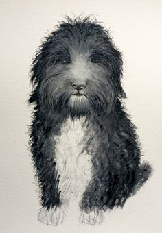 Custom Pet Portraits and Animal Commissions  Three sizes